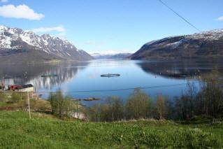 hva heter landsdelene i norge